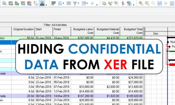 Hide sensitive data XER file